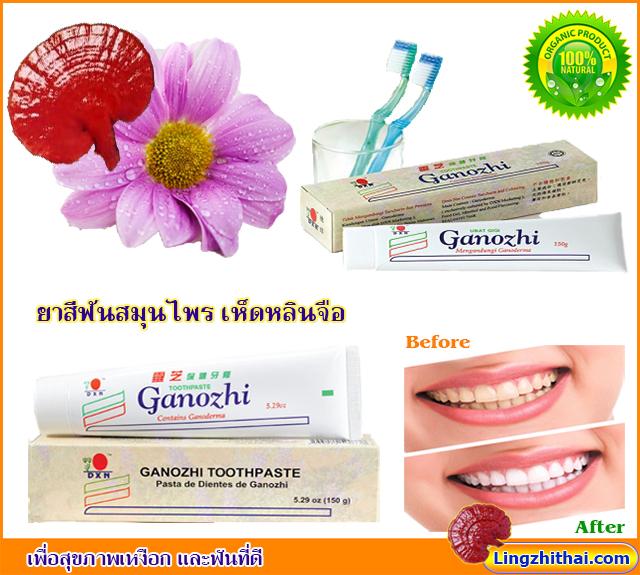 Lingzhithai Ganozhi Toothpaste